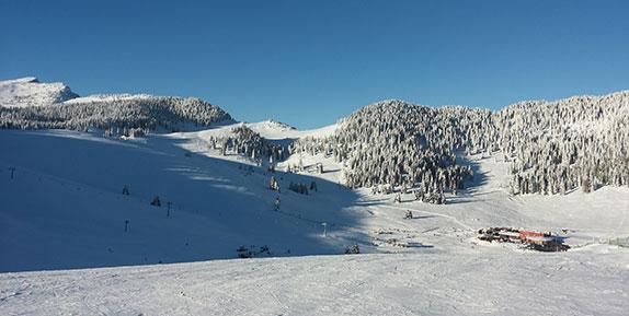 dove sciamo